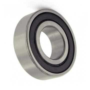Deep Groove 2RS Ball Bearing 6002 6200 6201 6203 6301